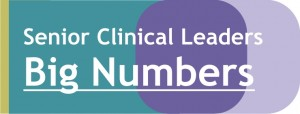 Big Numbers - Senior Clinical Leaders
